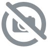 Mug noir Argenté Team Pirates